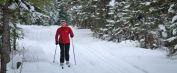 Ski de fond | Club de golf de Thetford